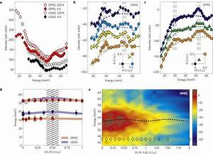 Observation Of Two Excitation Branches A  Unpolarized