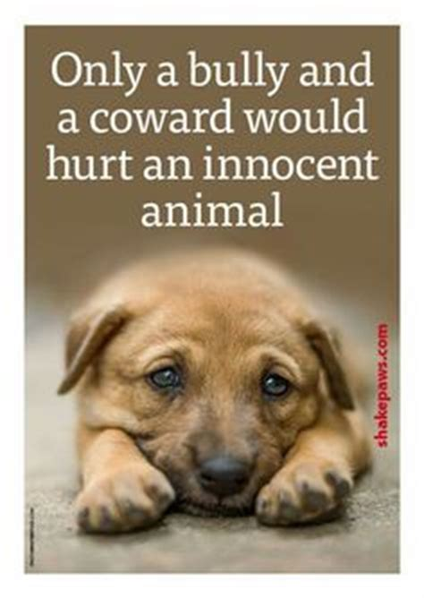Dog Animal Cruelty Quotes