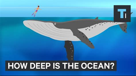 This Incredible Animation Shows How Deep The Ocean Really. Tuscan Living Room Colors. Home Decor Ideas For Small Living Room. Pictures Of Country Living Rooms. Ashley Living Room Furniture. Living Room Side Table Ideas. Light Living Room Furniture. How To Decorate A Living Room And Dining Room Combination. Paint Ideas For Living Room With High Ceilings