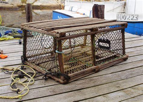 build a decorative lobster trap lobster trap free images at clker vector clip