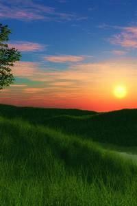 640x960 Grassy hill sunset Iphone 4 wallpaper