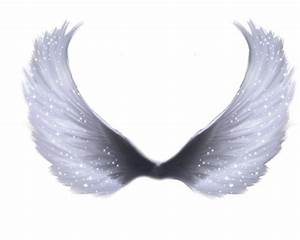 realistic angel wings angel wings png free download clip art free clip art