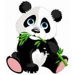 Lucu Panda