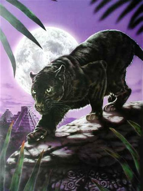 schwarzer panther  david penfound