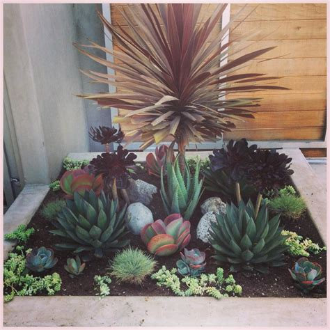 succulent front yard inspirations find your best style of succulent landscaping for your garden design tenchicha com