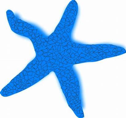 Starfish Clipart Clip Coral Vector Star Sea