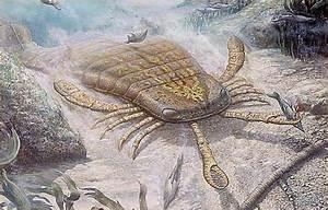 Blog de la clase de Biología y Geología de 1º de ...  Silurian