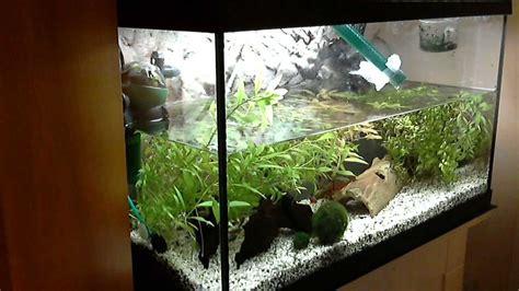 Aquarium Wasserwechsel mit Bauanleitung - YouTube