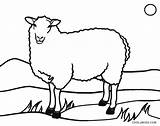 Sheep Coloring Pages Lamb Face Printable Easter Cool2bkids Drawing Clipartmag Getdrawings sketch template