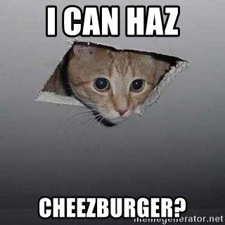 Cheezburger Cat Meme - i can haz cheezburger ceiling cat meme generator