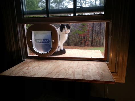 cat window perch doug cone maker developer entrepreneur