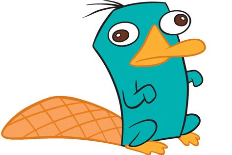 Phineas And Ferb Background Perry The Platypus Perry The Platypus Photo 24402587 Fanpop