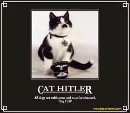 Image result for hitler cat