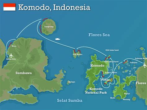 komodo national park indonesia indonesia swimtrek