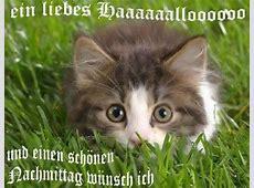 Nachmittag GB Pics, GB Bilder, Gästebuchbilder, Facebook