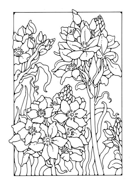 Franse Lelie Kleurplaat by 244 Best Images About Coloring On Dovers Free