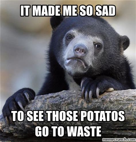 Sad Bear Meme - sad bear