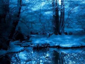 (3288) Snowy Night Forest Wallpaper - WalOps.com