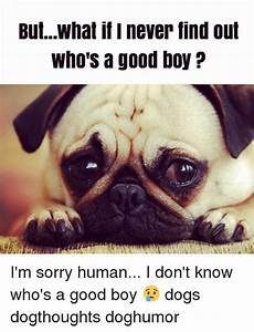ButWhat if I Never Find Out Who S a Good Boy I'm Sorry ...