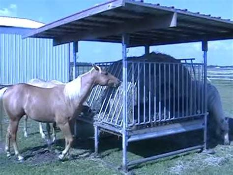 hay feeders for horses klene pipe structures h 8 hay feeder for horses