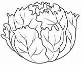 Lettuce Coloring Pages Vegetables Fruits Vegetable Leaf Drawing Fruit Colouring Printable Templates Sheets Template Para Lechuga Autumn Orange Preschool Preschoolactivities sketch template