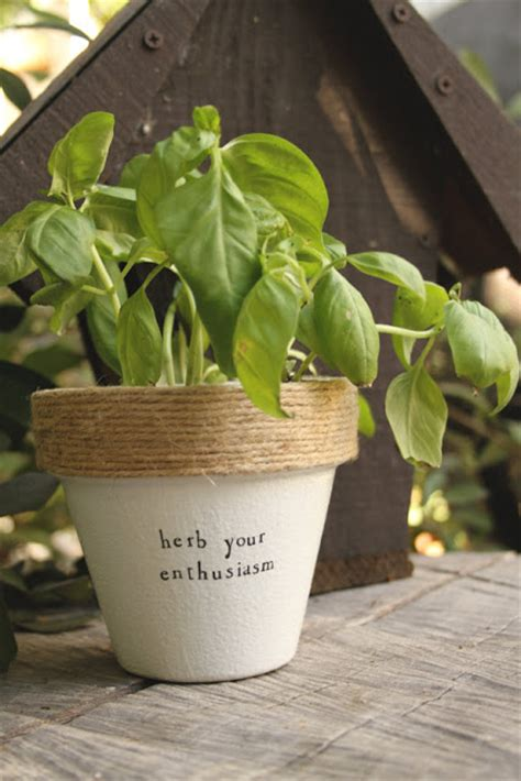 tiny herb gardens youll love   small space