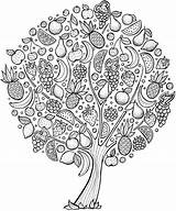 Coloring Tree Adults Cherry Printable Getcolorings sketch template