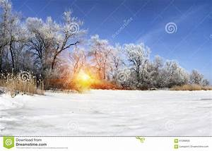 Beautiful Winter Landscape At Sunset With Snow Stock Image ...