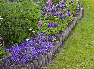 Que Faire Avec Des Fleurs De Lavande : 4 plantes id ales pour les bordures d tente jardin ~ Dallasstarsshop.com Idées de Décoration