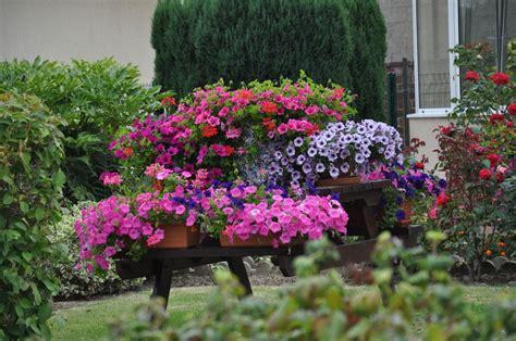 Jardins Fleuris 0230024  Photo De Jardins Fleuris 2009
