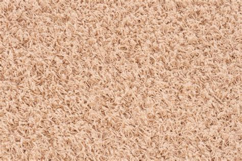 Light Brown Carpet by Lalee Relax 347120048 150 Carpet 120 X 170 Cm Light Brown