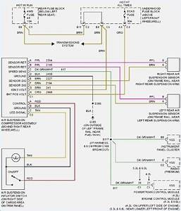 2002 Chevrolet Trailblazer Wiring Harness  U2022 Wiring Diagram For Free