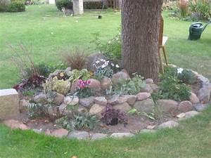 Steine Bepflanzen Garten. steine garten bepflanzen arten bodendecker ...