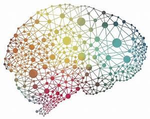 Imagery effective way to enhance memory, reduce false ...