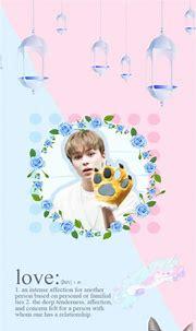 •Seventeen Members Wallpaper Edits•   Carat 캐럿 Amino