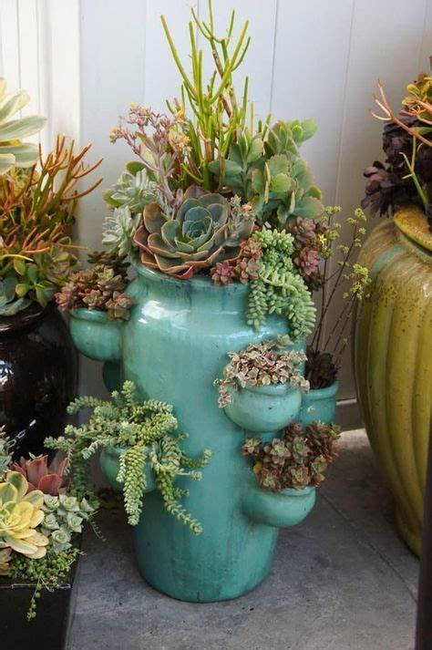 Ways Creating Enchanted Succulent Garden Your