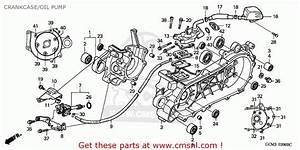 Honda Szx50s X8r 1999  X  Germany T13 Crankcase  Oil Pump