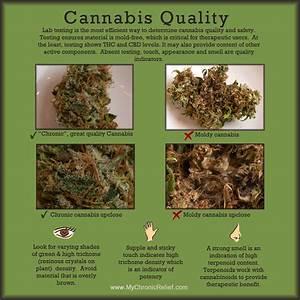 Cannabis Quality - What is Medical Marijuana | Chronic ...