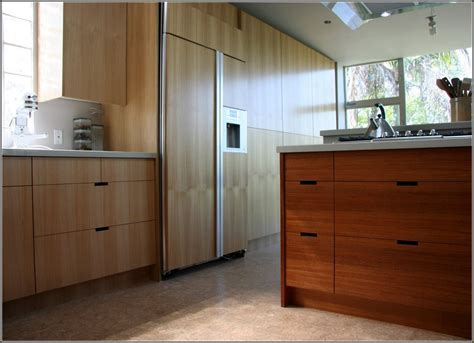 Can I Just Replace Kitchen Cabinet Doors Nagpurentrepreneurs