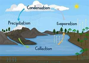 Water  Hydrologic Cycle In Nature