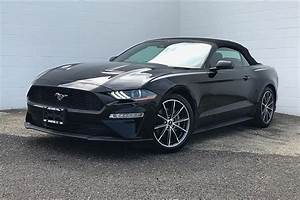 Pre-Owned 2019 Ford Mustang EcoBoost Premium Convertible in Morton #149989   Mike Murphy Ford