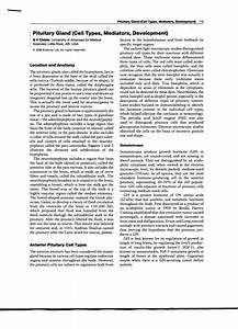 Pdf  Pituitary Gland  Cell Types  Mediators  Development