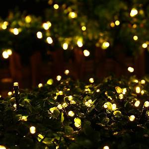 Lichterkette Solar Außen : 12 50m led solar lichterkette weihnachten leuchten deko dekoration garten neu ebay ~ Whattoseeinmadrid.com Haus und Dekorationen