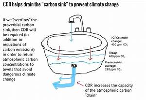 1000  Images About Carbon Sink Bog Diagrams On Pinterest