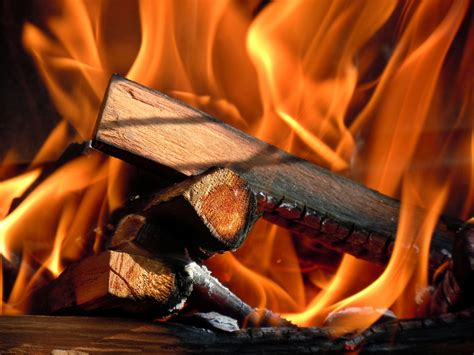 best wood to burn how to choose the best firewood for burning mr fireplace