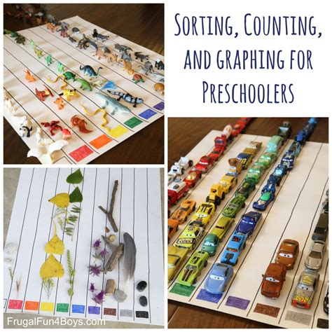 sorting counting  graphing  preschoolers