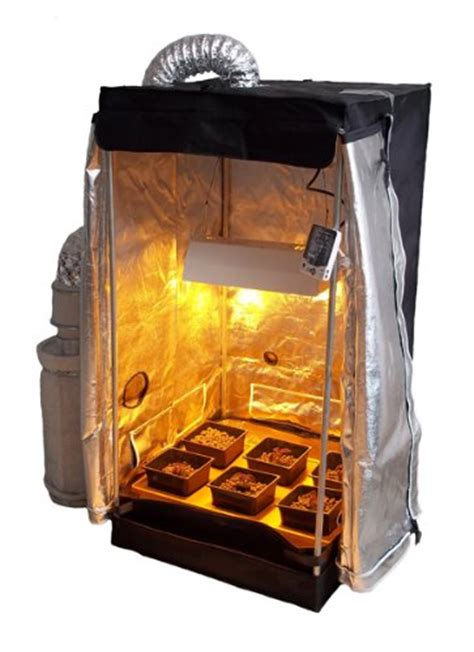 chambre culture cannabis complete the best grow tent kit for the moneycollege of cannabis
