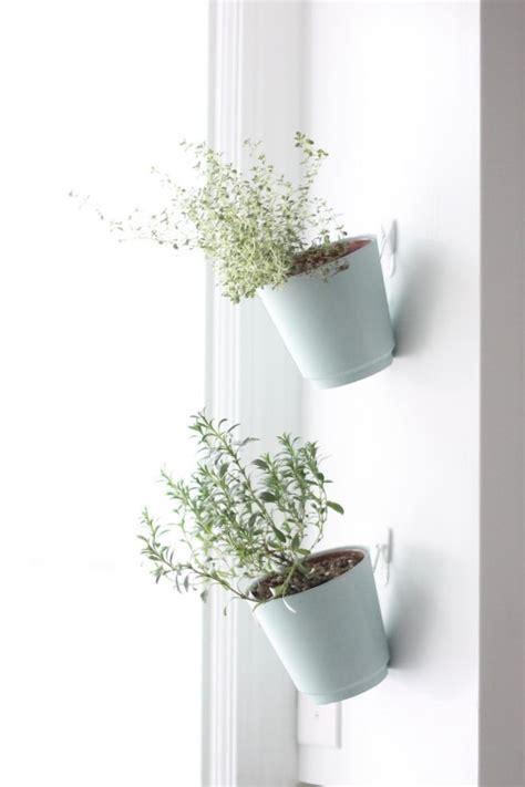 wall mounted planters hanging herb planters indoor herb garden