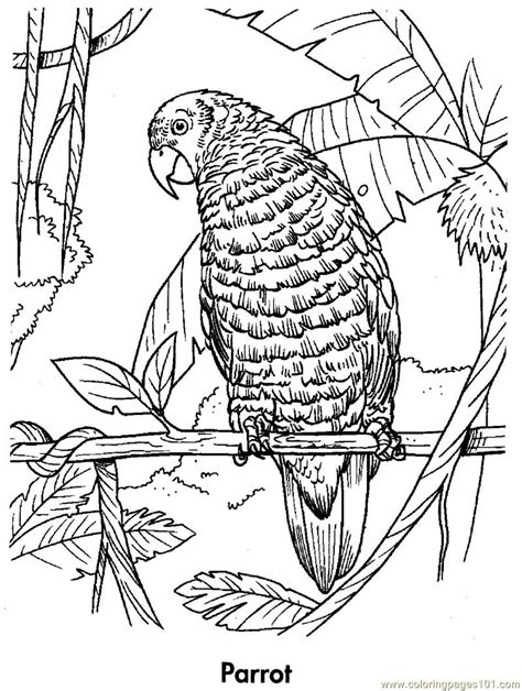 coloring smart printable coloring pages   kids