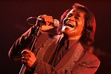 James Brown: Family, Friends Believe Singer May Have Been ...